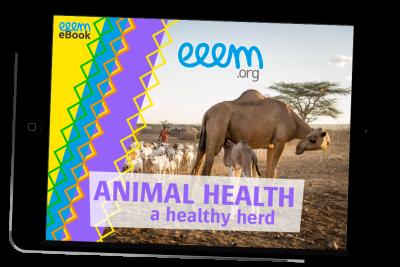 ebook-cover_animal-health